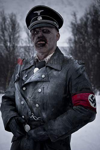 Click image for larger version.  Name:nazi-zombie-poster.jpg Views:2094 Size:92.0 KB ID:294815