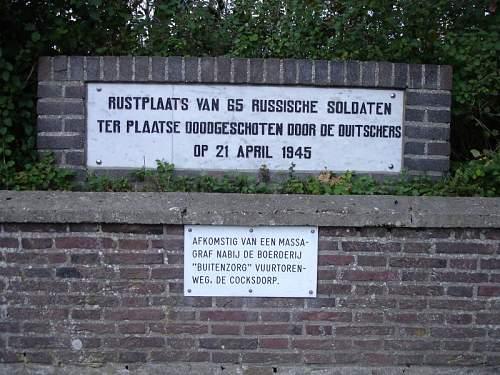 Texel064.jpg