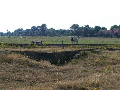 Trenches 7.jpg
