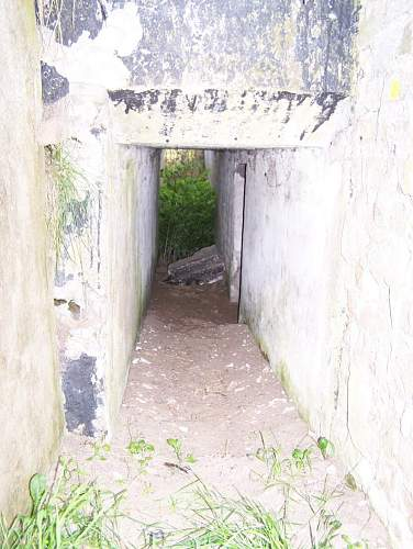 Trenches 9.jpg