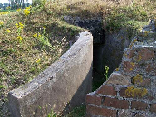 Trenches 10.jpg