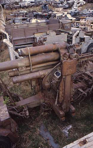 Budge-124.jpg
