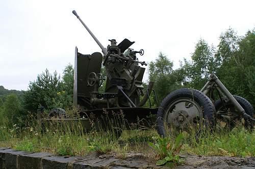 duk-416.jpg