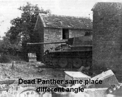 11 Yes dead panther.JPG