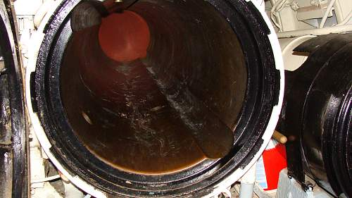 DSC01635.jpg