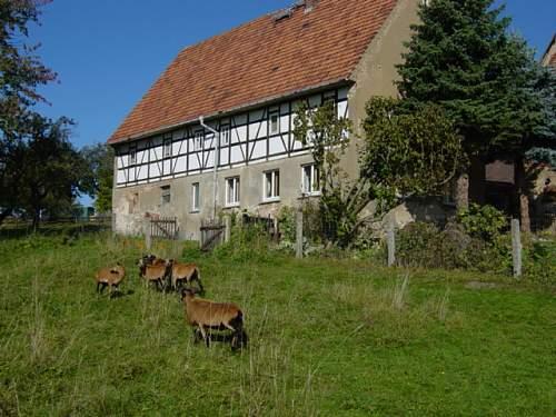 Germany 2012 087.JPG