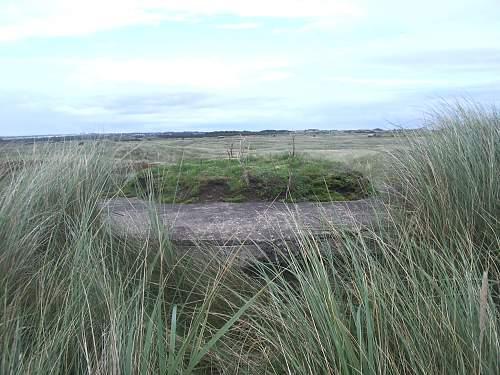 remains of a coastal one.jpg