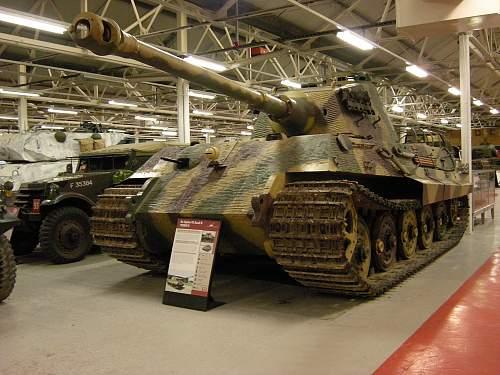 Tiger 2 (2).jpg