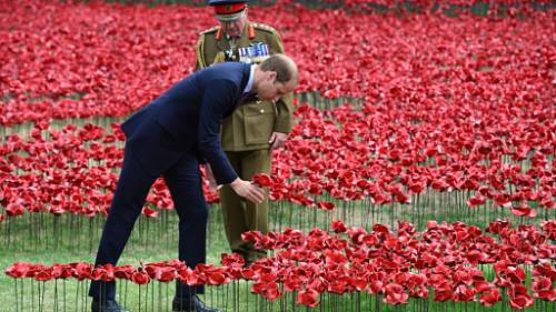 Click image for larger version.  Name:tower-of-london-poppies-4.jpg Views:0 Size:188.2 KB ID:724647