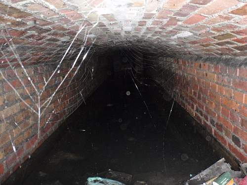 Tunels.jpg