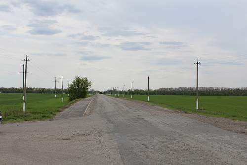 Click image for larger version.  Name:Ribbentrop ridge, looking towards the Railway.jpg Views:4 Size:321.7 KB ID:845491