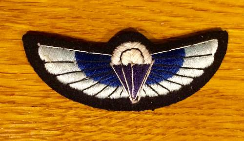 SAS wings