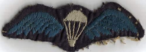 British Para qualification wings
