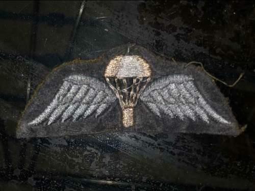 Para jump wing