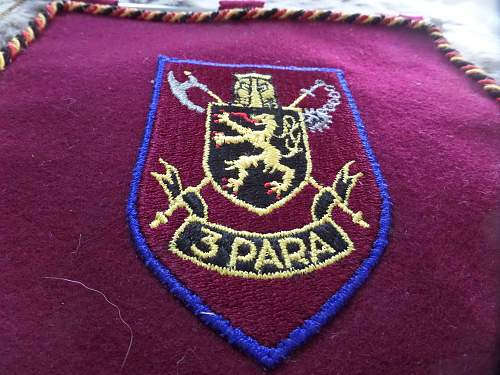 Help with coat of arms on 3 Para flag