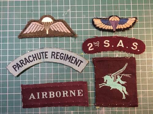 Airborne/SAS insignia