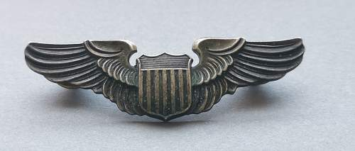 Two US air force badges