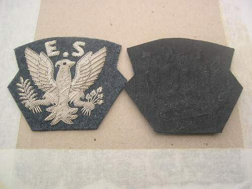 Help with this eagle squadron patch