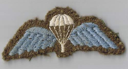Click image for larger version.  Name:para wings for sale.JPG Views:1346 Size:85.0 KB ID:290339