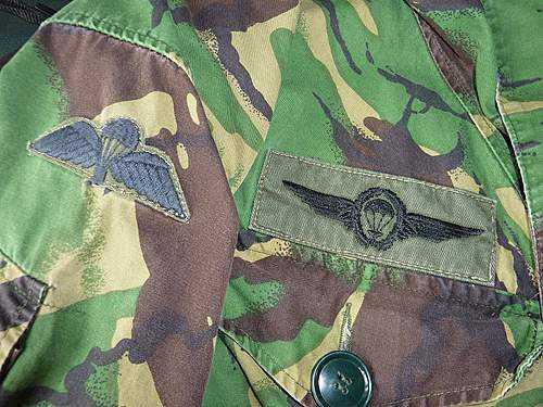 Click image for larger version.  Name:airborne patch.jpg Views:78 Size:180.2 KB ID:368652