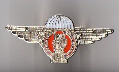 Prototype Airborne Armoured Recce cap badge