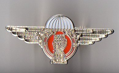 Prototype Airborne Armoured Recce cap badge