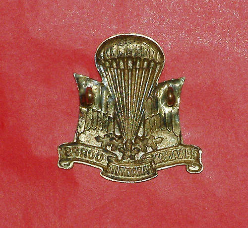 1st Canadian Parachute Corps Cap Badge good ?