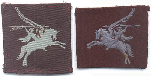 Click image for larger version.  Name:Pegasus patches.jpg Views:622 Size:45.3 KB ID:378864
