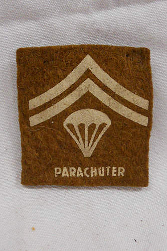Click image for larger version.  Name:parachuter.JPG Views:53 Size:214.4 KB ID:397141