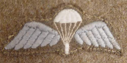 Click image for larger version.  Name:Parachute wings 1..JPG Views:329 Size:93.1 KB ID:440262