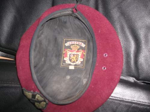 1st Field Force Vietnam Maroon Beret