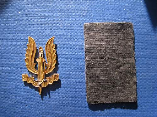 Cloth SAS badge
