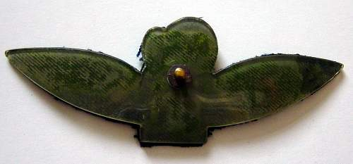 Click image for larger version.  Name:Glider Pilots wings, reverse.Half size version. Ex Polish glider pilot..jpg Views:600 Size:70.1 KB ID:61964