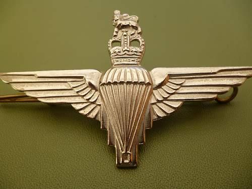 Para Beret wings.