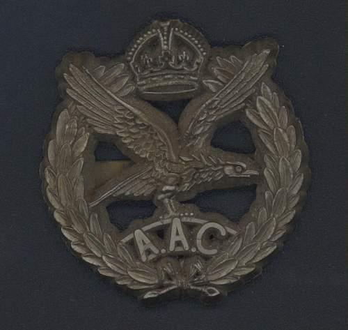 Info Sought On British Para Badge.........