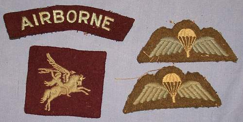 Latest find ! Airborne cloth badges