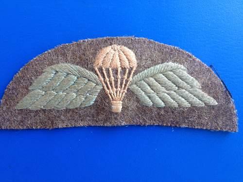 Strange parachute wings badge?