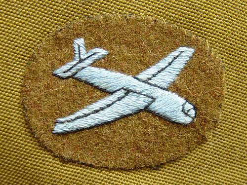 Click image for larger version.  Name:Glider-troopers-badge..jpg Views:873 Size:185.9 KB ID:7430