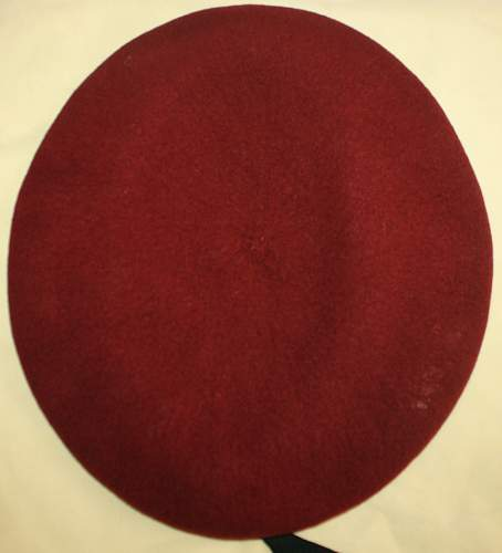 just purchased first para beret! what do you think please?