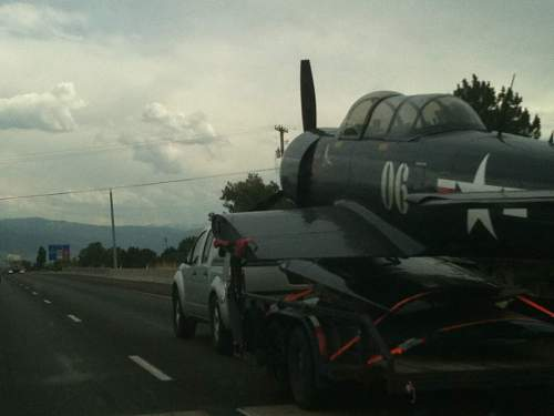 Check out what I found on the road!!!
