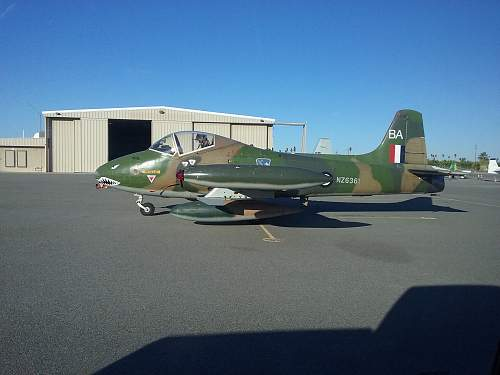 Kiwi Fighter