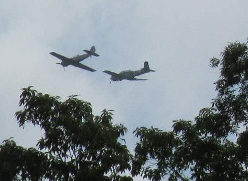 Help Identifing Two Planes...