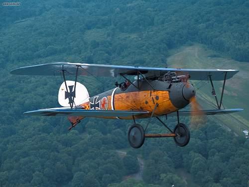Click image for larger version.  Name:Old_Rhinebeck_Aerodrome_Albatros_DVa.jpg Views:126 Size:284.9 KB ID:614592