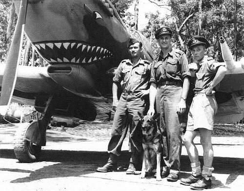 'Sharks teeth' Lancaster