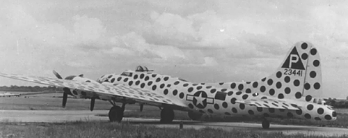 B-17 with exotic painting