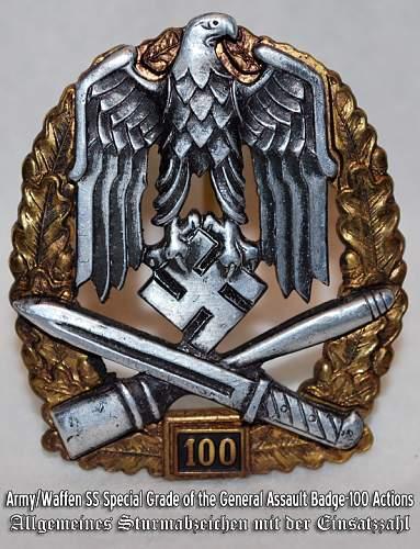 """Allgemeines Sturmabzeichen """"100"""""""