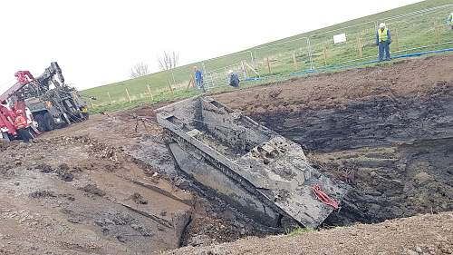 Buffalo LVT recovered from English field