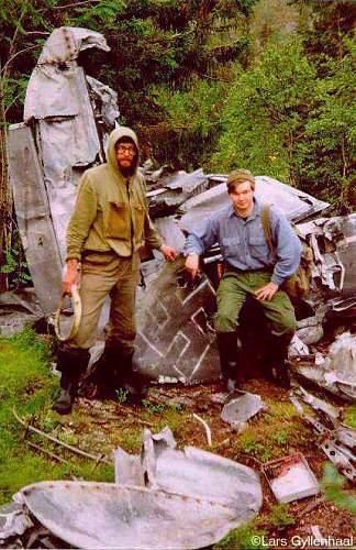 WW2 plane found in Forset