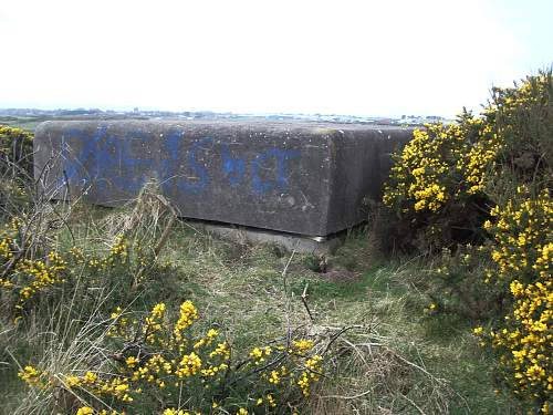 unusual vehicle relics found near newly discovered pillbox bunker + other stuff