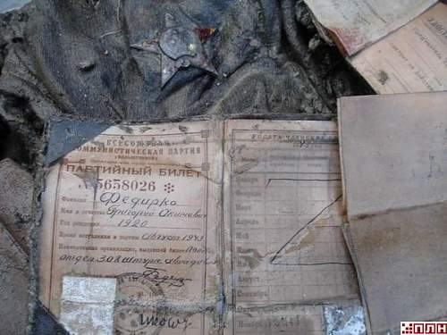 IL-2 recovered in Pskov region. Sturmovik found